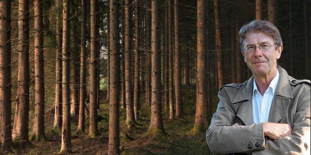 Färd i otakt genom skogen mot framtiden