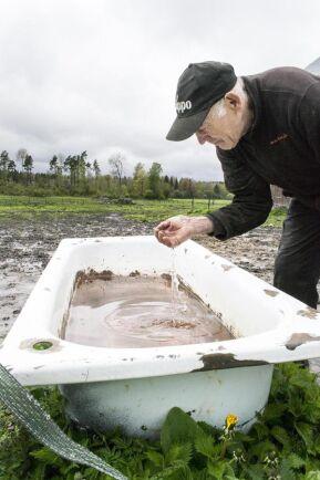 Rent. Hans-Ove Skogh har inga problem att själv dricka vattnet ur hästarnas badkar. Karen menar han är slitna, men rena.