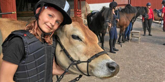Så är det att växa upp på en gård – bondens barn berättar!