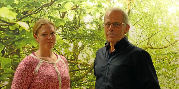 Svensk skog kan drabbas av EU-krångel