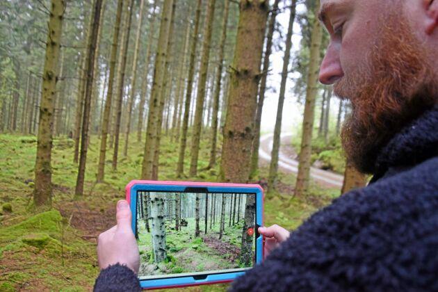 Oscar Nyman i Halland visar hur han mäter skogen med appen Katam Forest, en av de innovationer som nominerats till Skogselmia innovation award 2019.