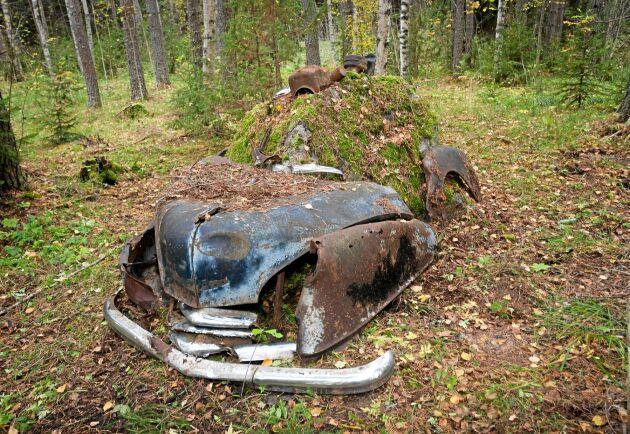 Gamla bilar som blir stående kan ställa till det ur miljösynpunkt.