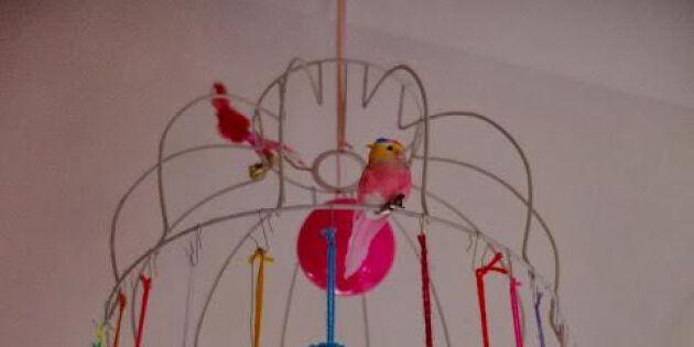Pompom-lampa för fria fåglar
