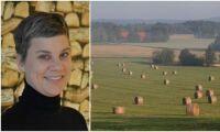 LRF: Valutgången positiv för jordbruket
