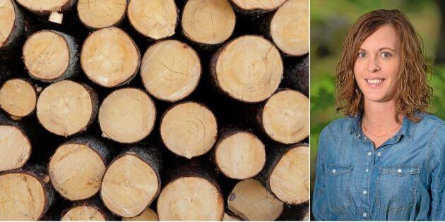 Sexismen hotar hela skogsbranschen