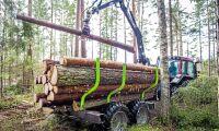 Bakslag för svensk skogspolitik