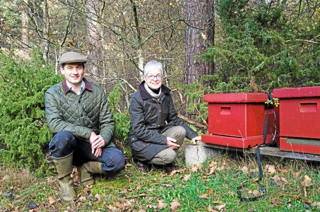 Bina trivs i skogen och producerar honung.