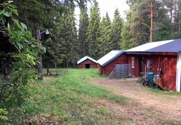 Valet föll på en skogs- och jordbruksfastighet med ett Älvsbyhus på.