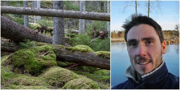 """""""Skogsstyrelsen gör min skog värdelös"""""""
