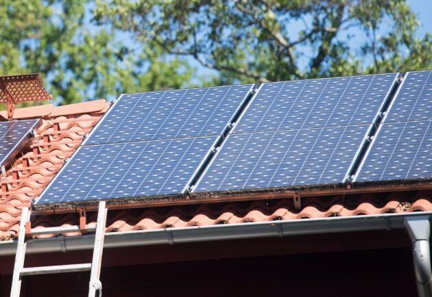 Utbetalningen av bidrag för att installera solceller har tillfälligt stoppats, sedan anslaget halverats i den K+M-märkta budget som riksdagen beslutat om.