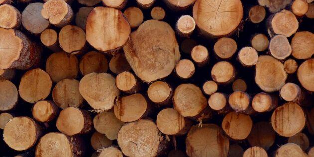 EU-pengar till utveckling av unik skogsmaskin