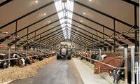 Gäddeholm satsar på mjölkproduktion