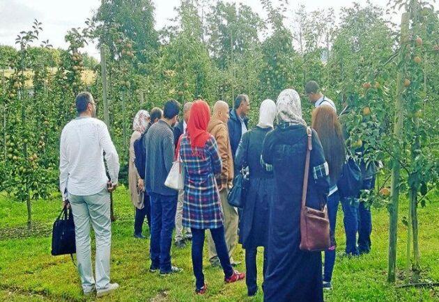En del av utbildningen handlade om den forskning som bedrivs på SLU Alnarp. Här är en grupp ute och tittar på skolans odlingar.