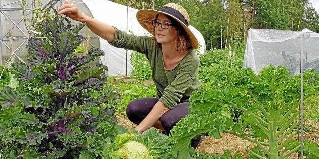 """Elins grönsaksodling ska stå pall i kris: """"Mindre sårbart med närodlade grödor"""""""