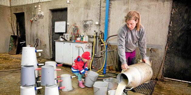 Ett sjunkande mjölkpris gav eko på Åkersta