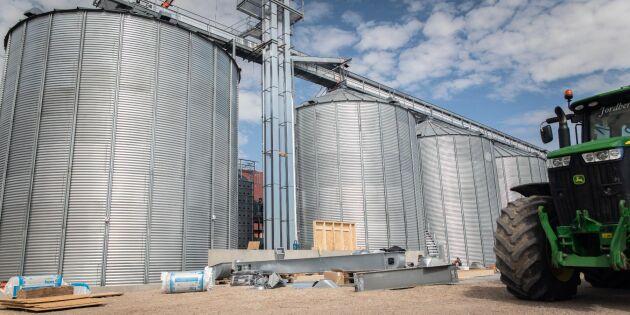 Rådet: Håll extra koll på lagrad spannmål