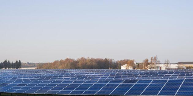Solcellspark anläggs på jordbruksmark