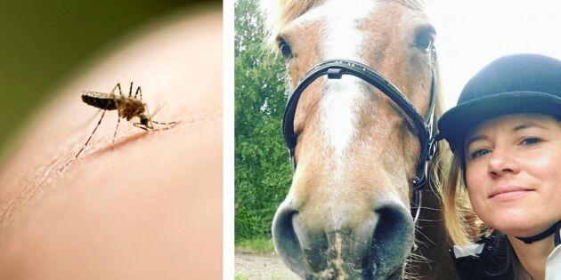 Karin har aldrig fått ett myggbett