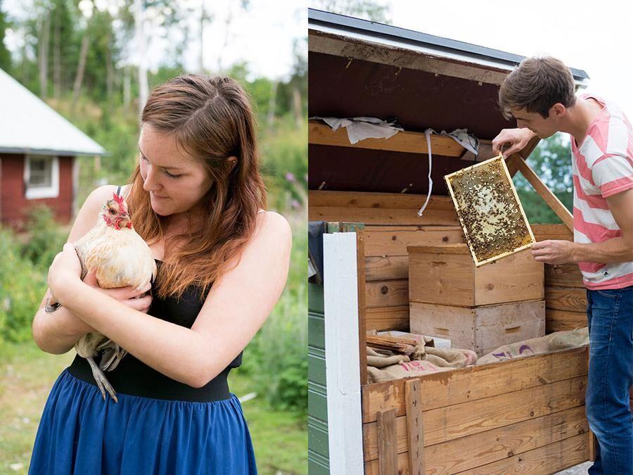 Paret vantrivdes i lägenhet. Efter två veckor på landet hade de skaffat höns och sedan även bin.