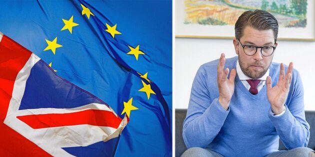 """""""Fler SD-väljare skulle ha röstat på Alliansen"""""""