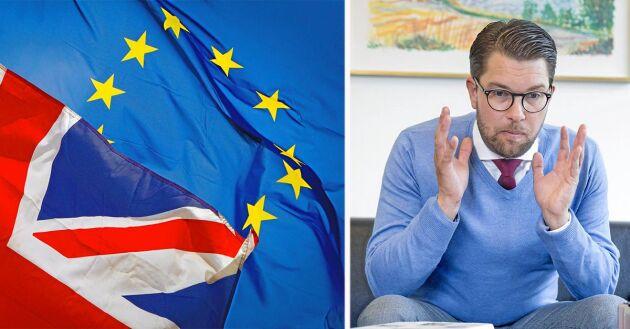 SD:s Jimmie Åkesson vill lämna EU – något som debattören motsätter sig.