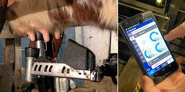 Mjölkningsmaskinens hemlighet sitter i kameran