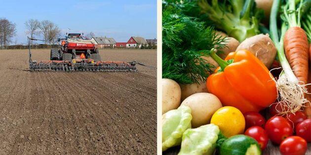 Så vill regeringen satsa på livsmedel – här är handlingsplanen