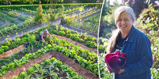 Underbara potager: Ätbart och blommigt i fin förening!