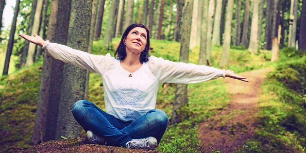 Tanka ny energi – med ett skönt skogsbad