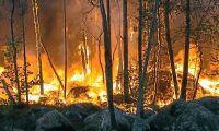 Vinden gav skogsbranden ny fart