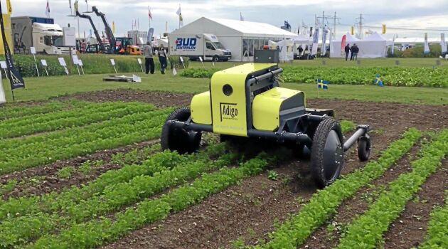 Robotar som behandlar ogräs är en gemensam nämnare bakom flera av startuppbolagen. Här är en arkivbild från Borgeby på ogräsroboten Asterix.
