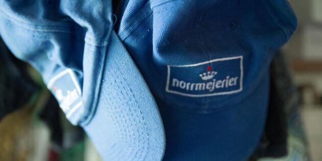 Högre omsättning för Norrmejerier