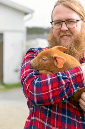 """""""Ett tag var grisarna på väg bort från Hamragård men så kom vi på hur roligt det är att arbeta med dem så då utökade vi igen"""", säger Johan Sten."""