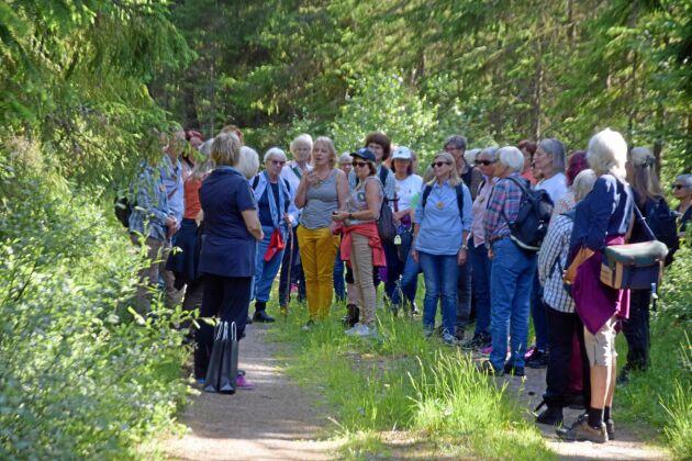 Här leder skogsägaren Camilla Logarn sina nordiska kolleger i en tyst vandring. Tystnaden är eftertraktad.