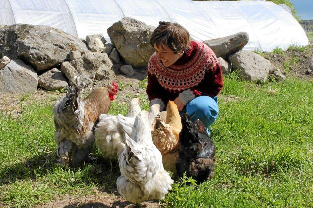 Utöver grönsaksodlingen ägnar Elin Enander mycket tid åt att ta hand om gårdens djur.