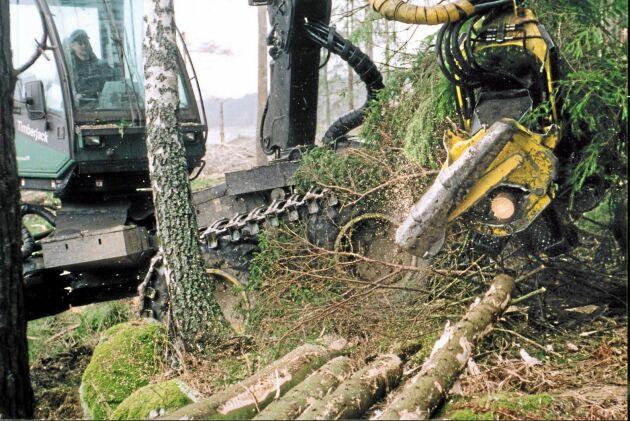 Utebliven avverkningsanmälan kan komma att kosta 5 000 kronor för varje påbörjad oanmäld hektar.