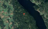 Skog i Sunne kommun såld
