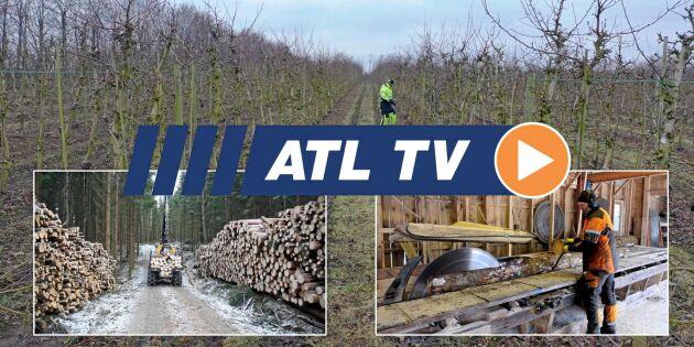 ATL TV: Rekordår för Malwa