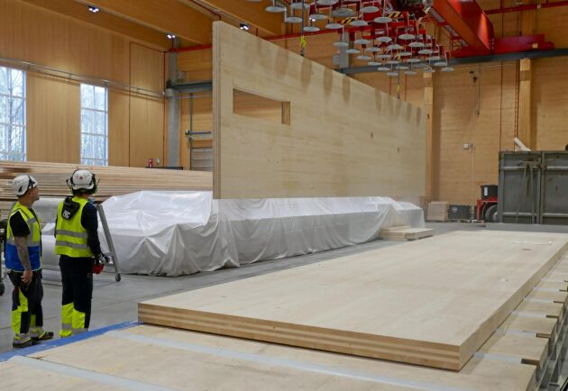 De färdiga elementen är 16 gånger 3,5 meter stora och består av tre till sju lager hållfasthetssorterade och fingerskarvade brädor.