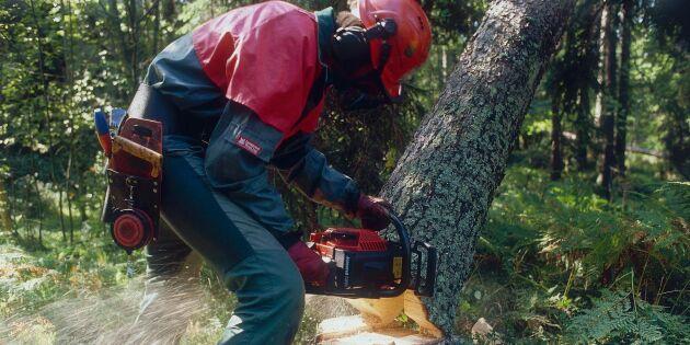 Varje jobb i skogen skapar två andra jobb