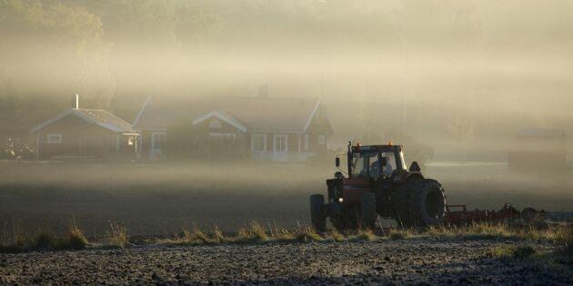 Sommaren gjorde svenskar mer positiva till bönder
