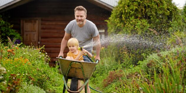 Årets trädgårdshjältar 2021 – rösta på dina favoriter