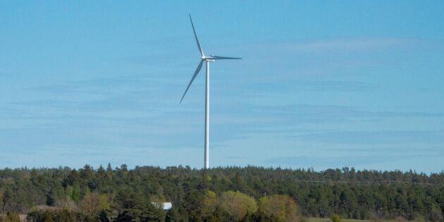 Markägarna vinnare på modern vindkraft