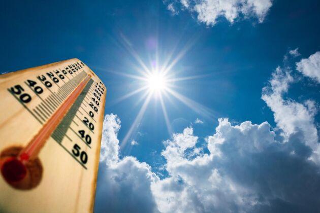 Värmeböljan med rekordtemperaturer fortsätter under resten av maj och en bit in i juni. Foto: Istock