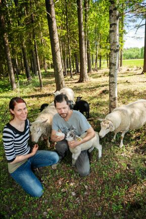 Elin och Daniel med ett av lammen som måste flaskmatas.