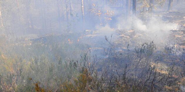 Nya misstänkt anlagda bränder i helgen