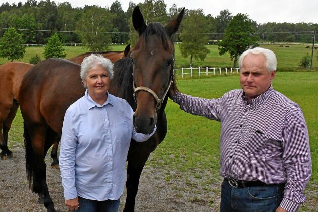 Sedan 1960–talet har det fötts upp 350 föl på gården som sedan blivit travhästar. Birgitta och Ulf Eliasson håller fortfarande liv i den verksamheten.